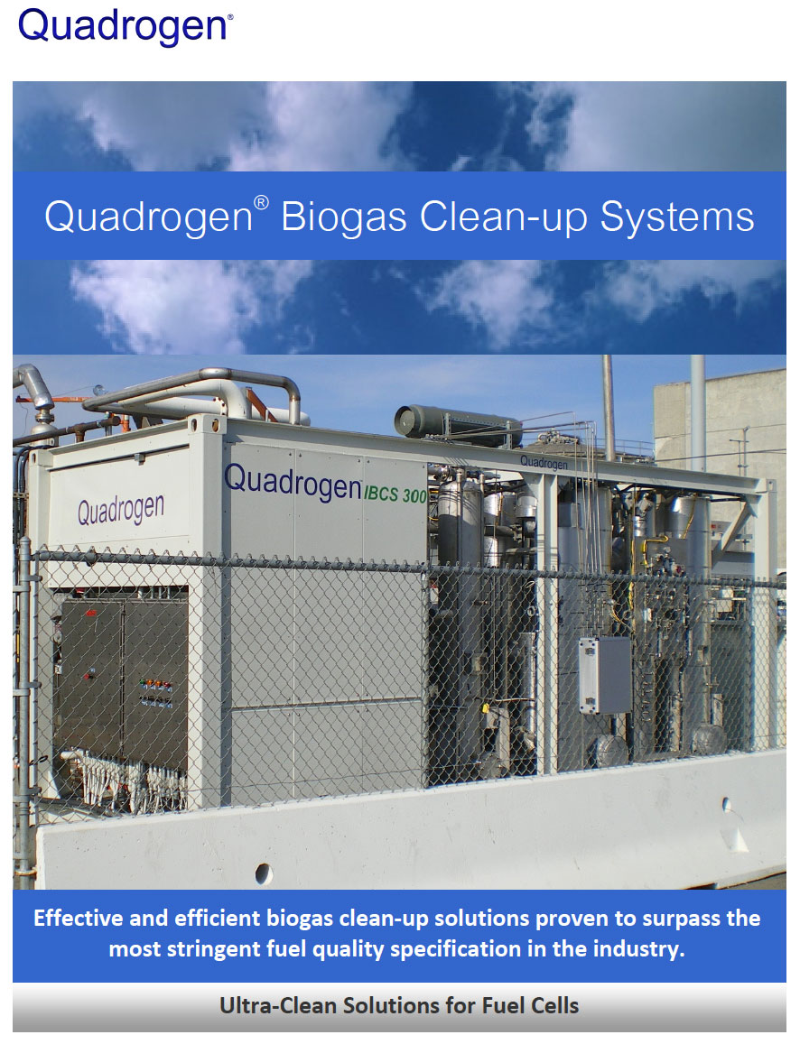 Biogas Clean-up Systems