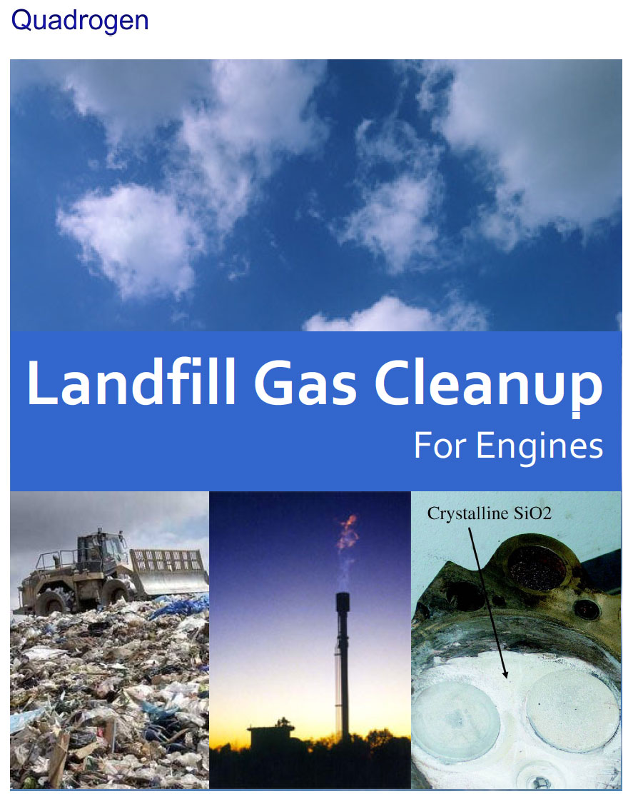 Landfill Gas Cleanup